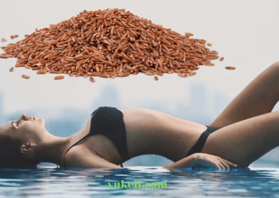 gạo-lứt-giảm-cân